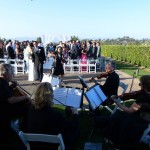 weddings string quartet (30)
