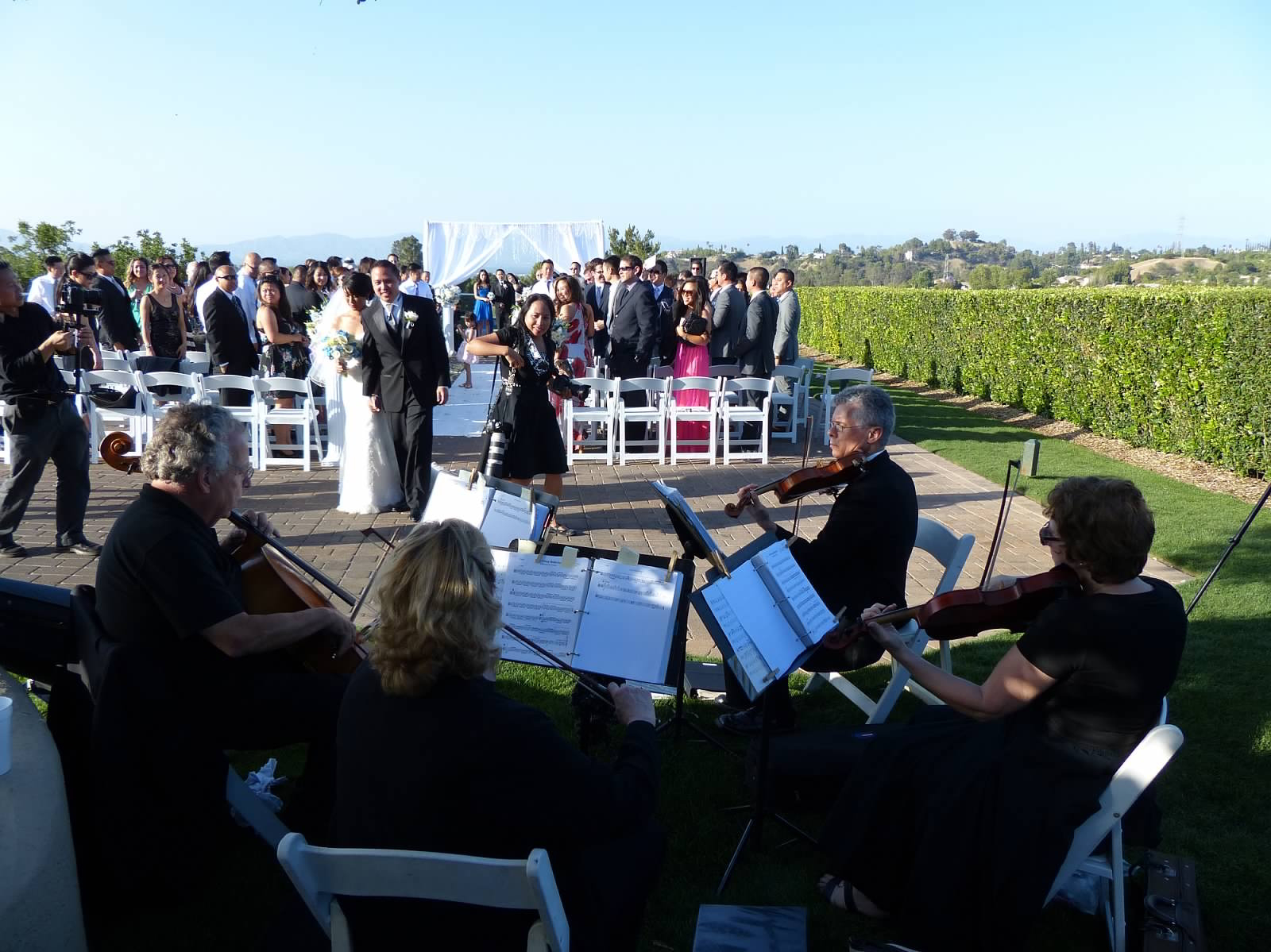 weddings string quartet (30)