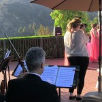 weddings string quartet (39)