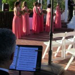 weddings string quartet (43)