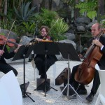 weddings string quartet (47)