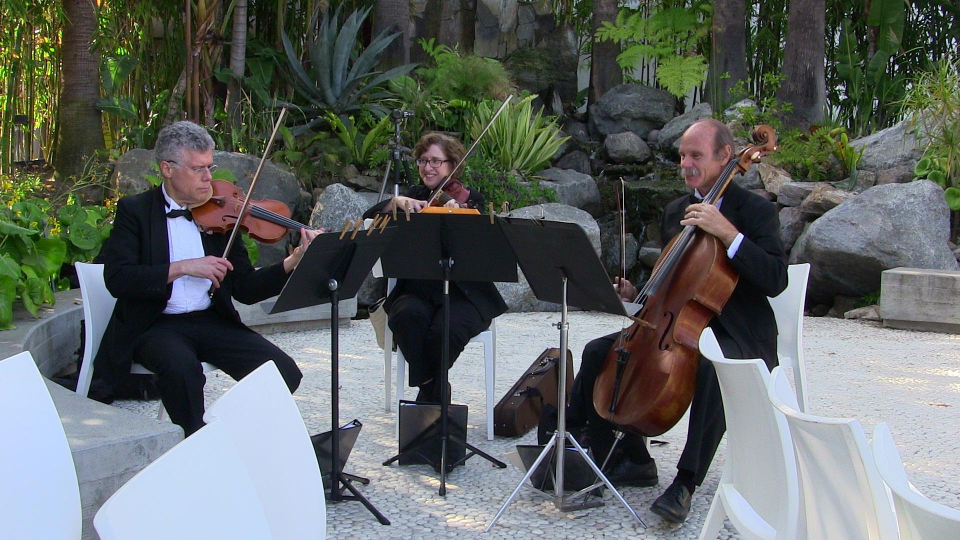 weddings string quartet (47)