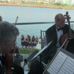 weddings string quartet (50)