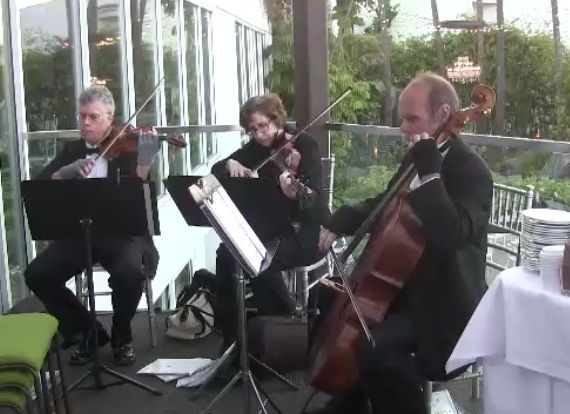 weddings string quartet (57)