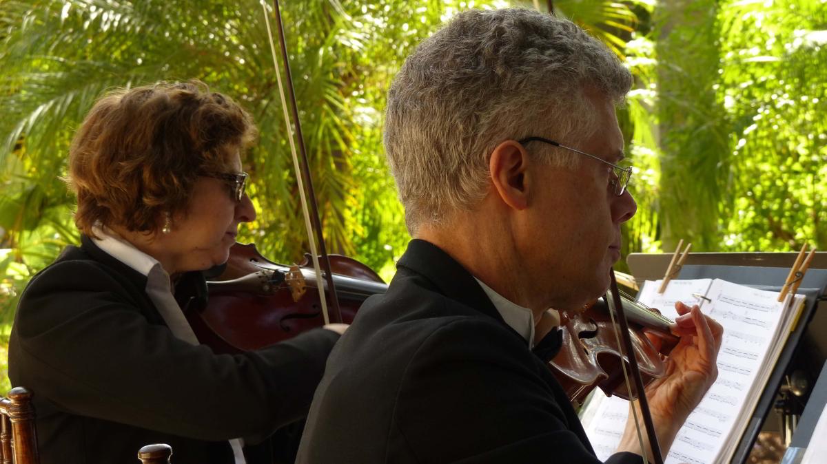 weddings-string-quartet-64.jpg
