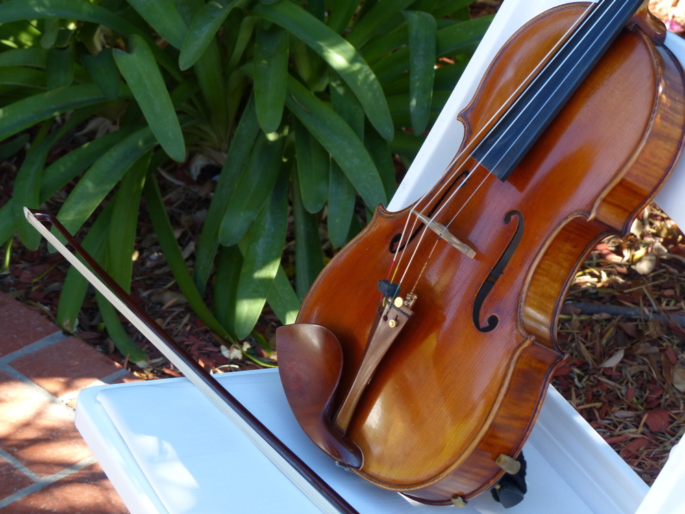 weddings string quartet (68)