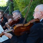weddings string quartet (71)